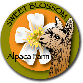 Sweet Blossom Alpaca Farm - Dade City, Florida